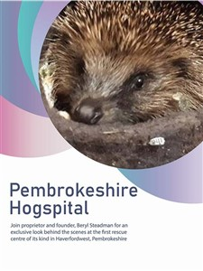 Pembrokeshire Hogspital