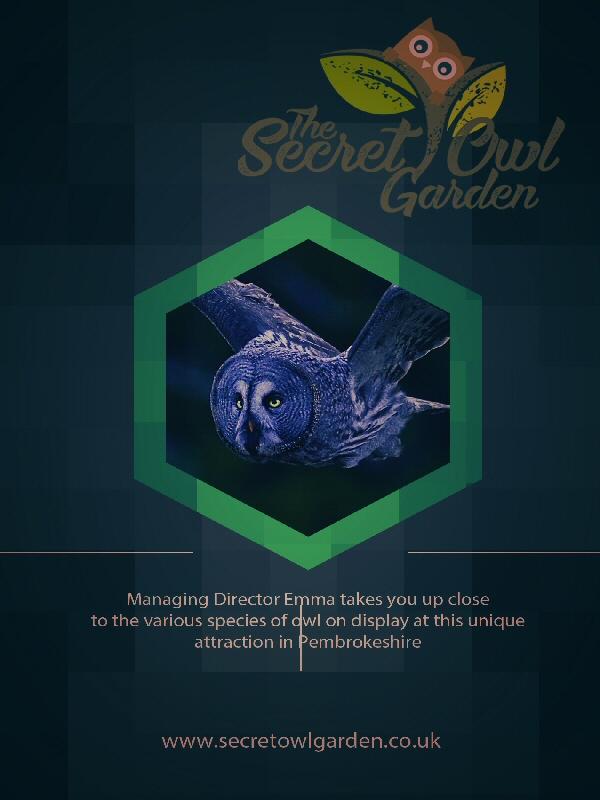Secret Owl Garden
