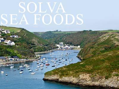 Solva Sea Foods