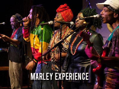 Marley Experience